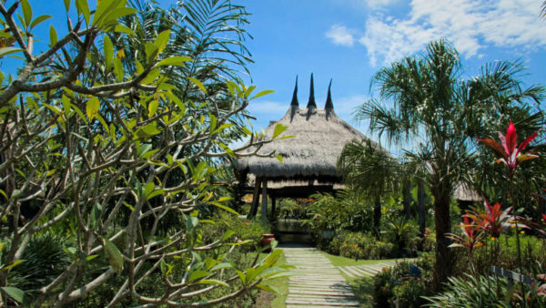 Desa Seni Yoga Resort - Fitness Holidays in Bali - Fitness Holidays for Travelling Athletes (1)