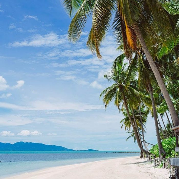 FitKoh Fitness Holidays - Fitness Holiday in Koh Samui - FitKoh - Fitness Holidays Thailand for Travelling Athletes
